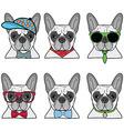 French bulldog set of 6 icons vector image