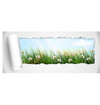 Fresh spring grass with flowers vector image