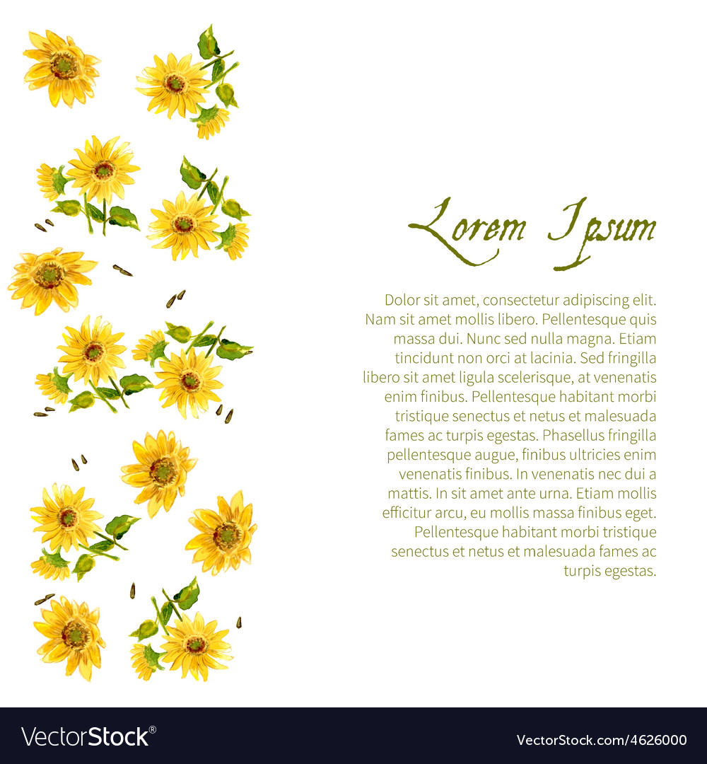 Composition of yellow sunflower vector