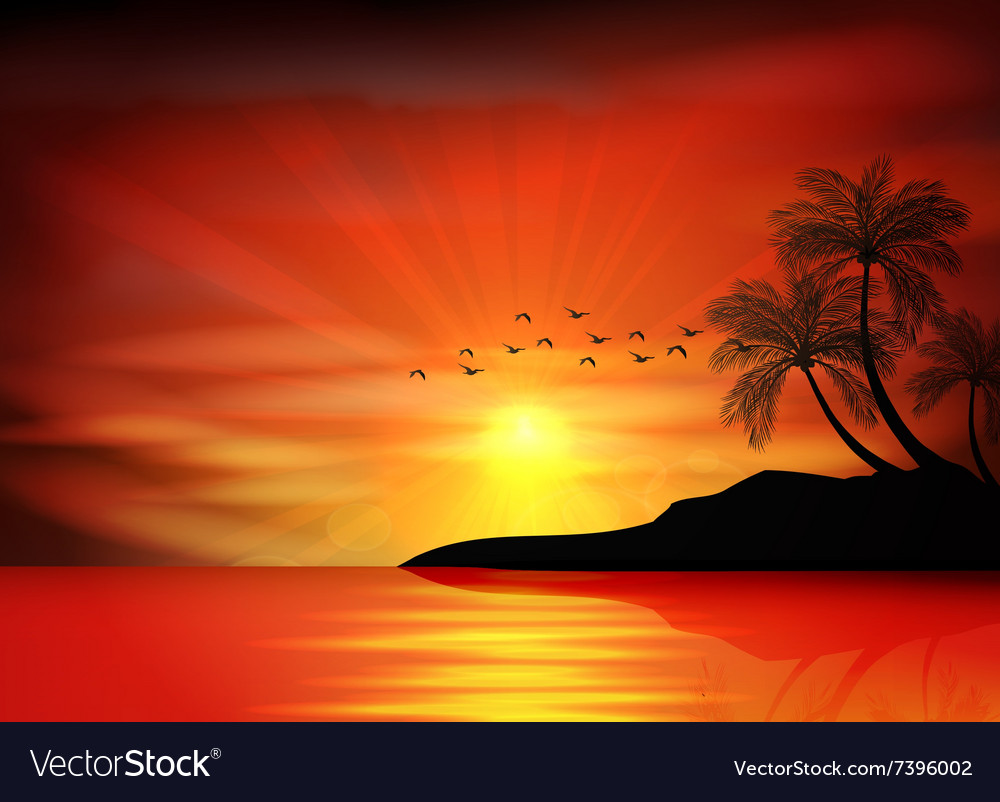Sunset background with bird and palm tree vector