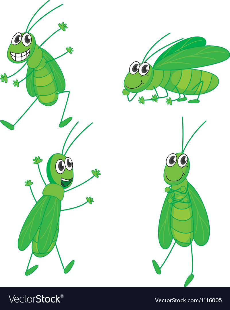 Four grasshoppers vector