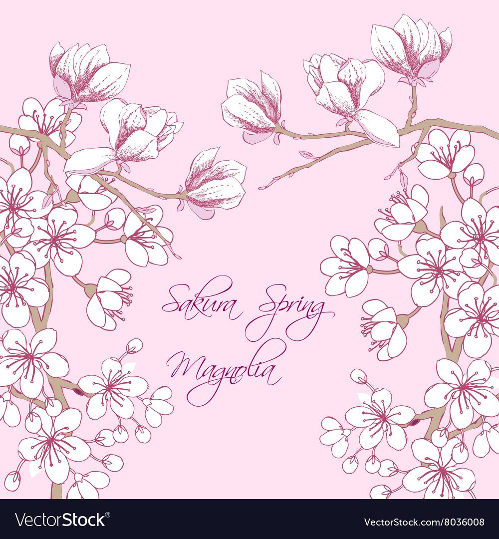 Sakura and magnolia vector