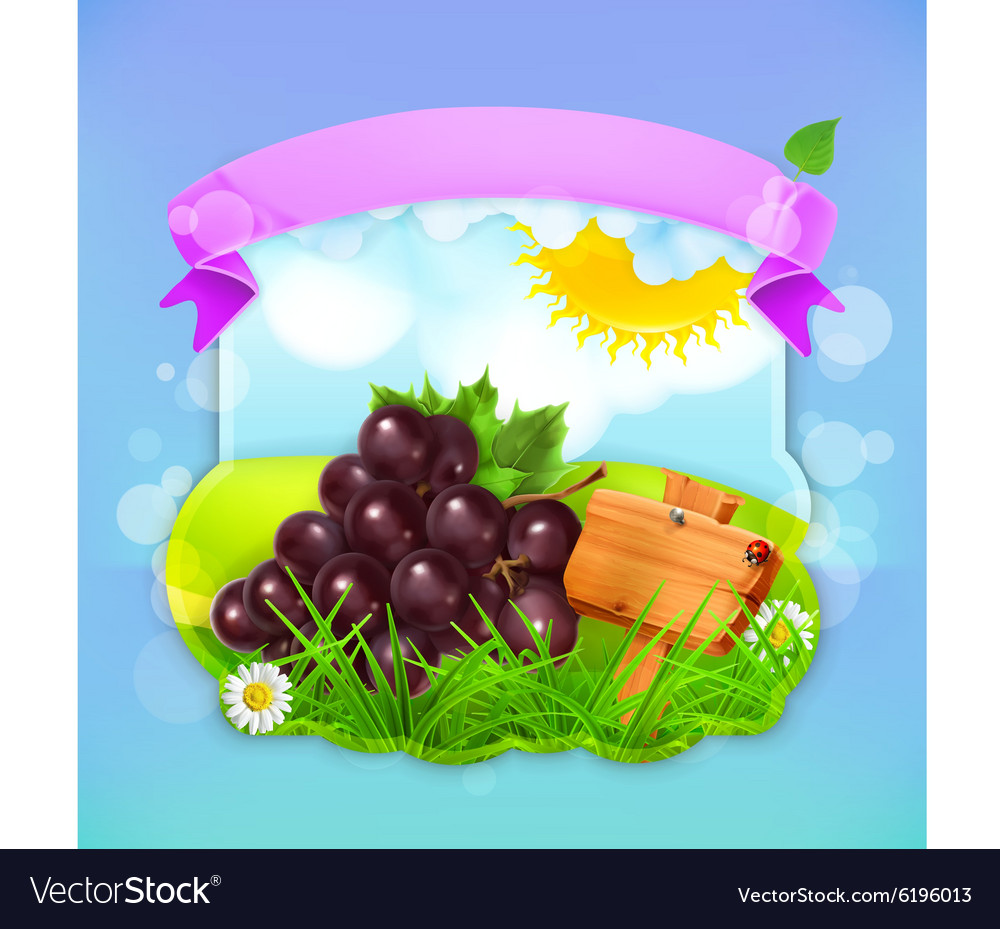 Fresh fruit label grape background for making vector