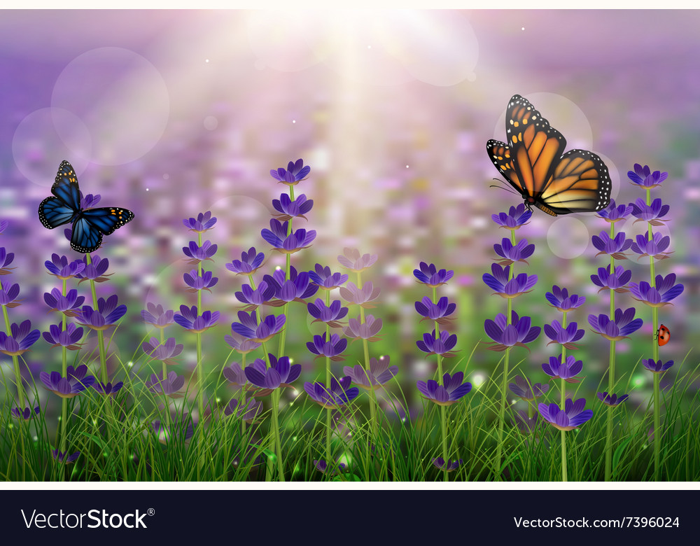 Purple tulips background vector