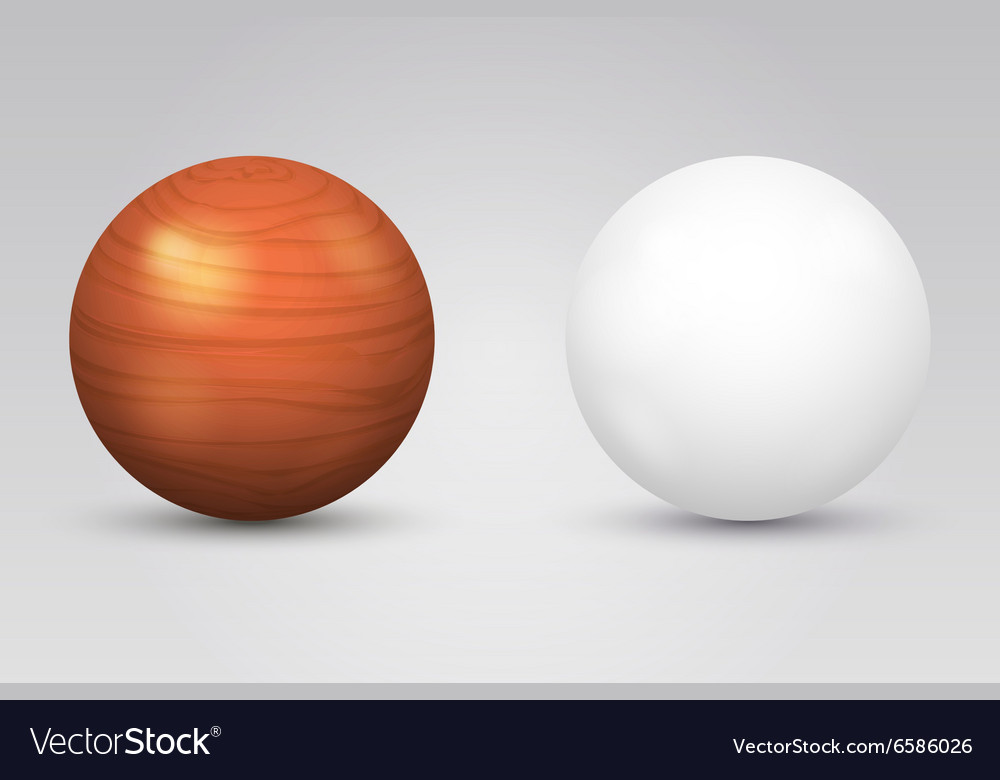 Realistic white ball and wooden sphere vector