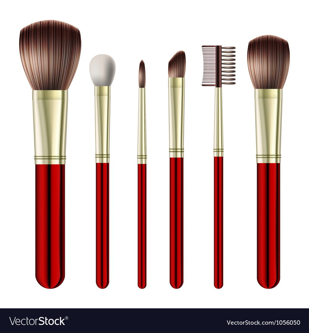 Set of makeup brushes vector