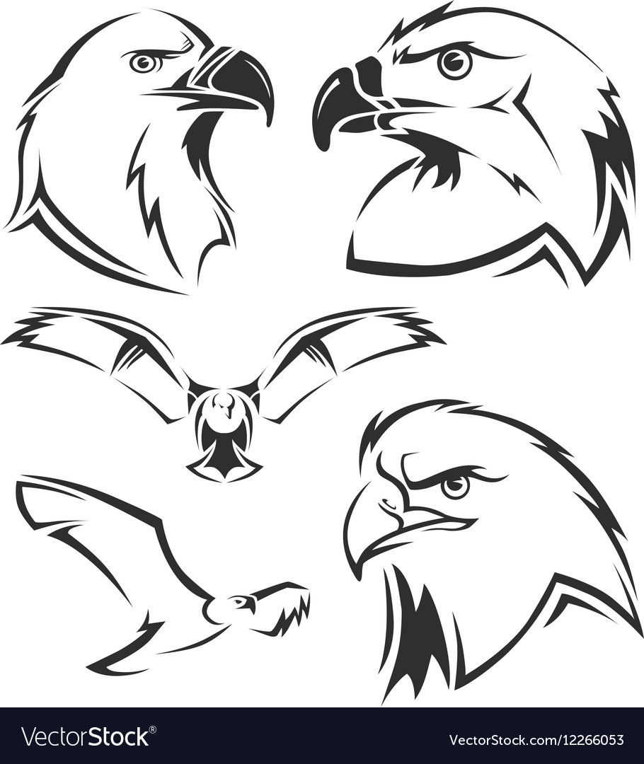 Eagle hawk mascots set vector
