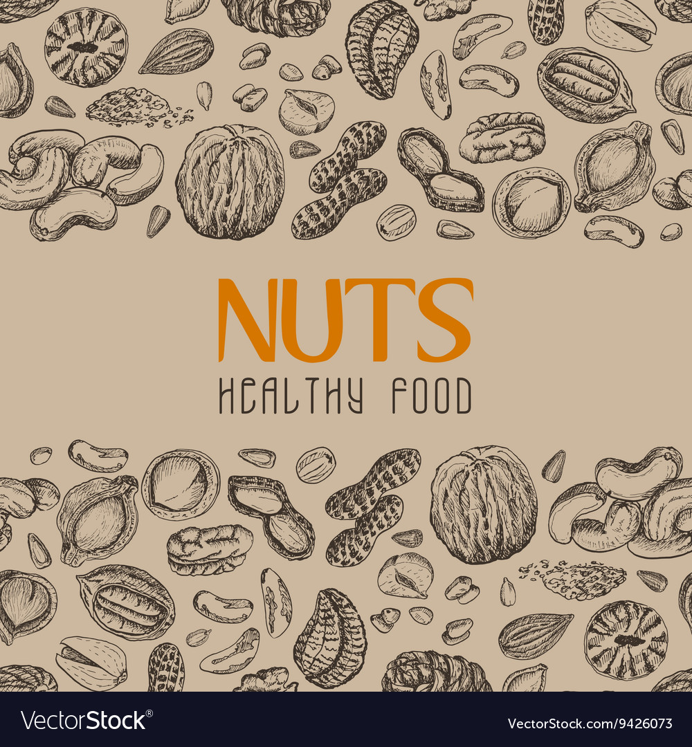 Background with nuts and seeds vector