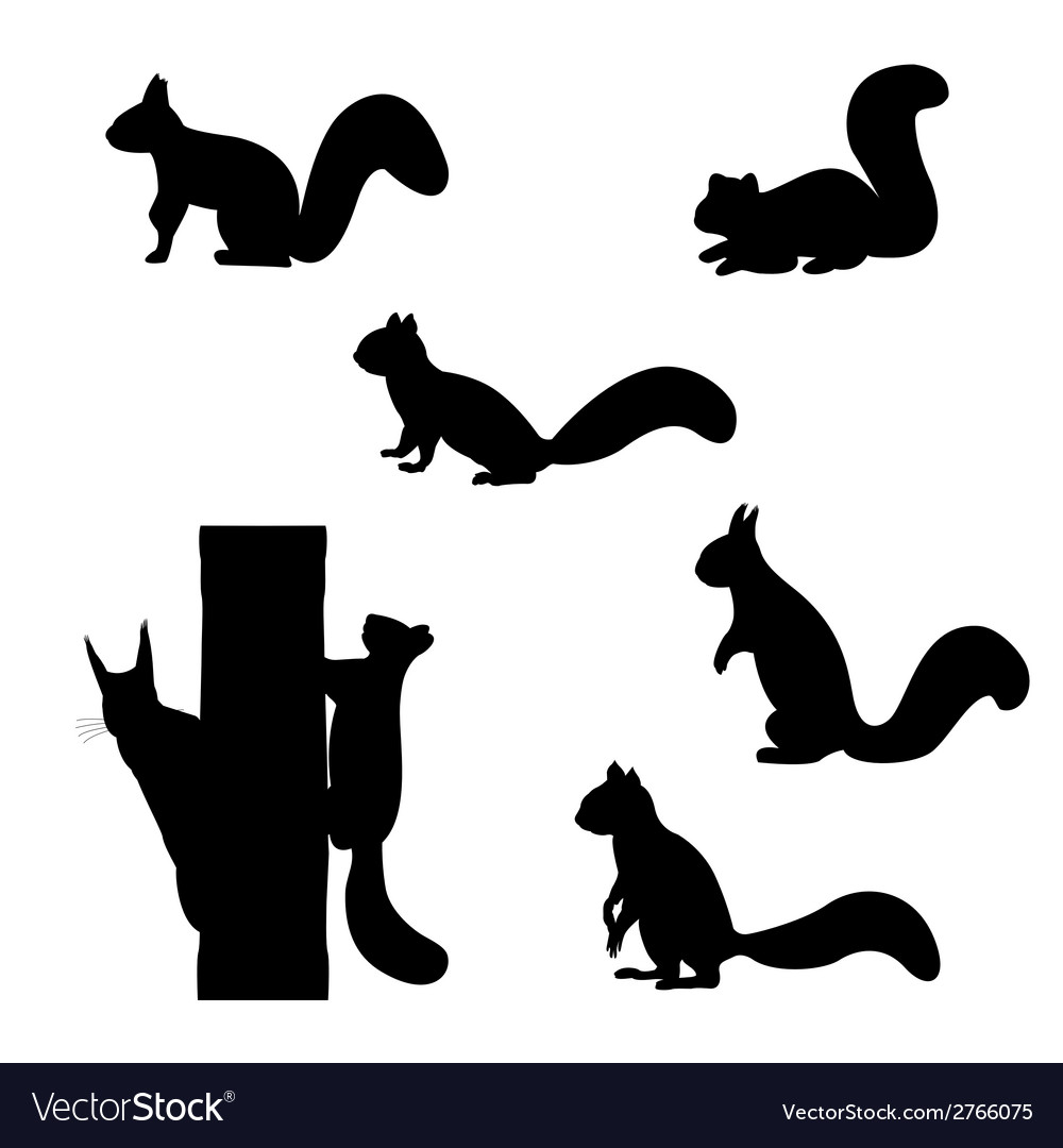 Set of silhouettes of squirrels vector