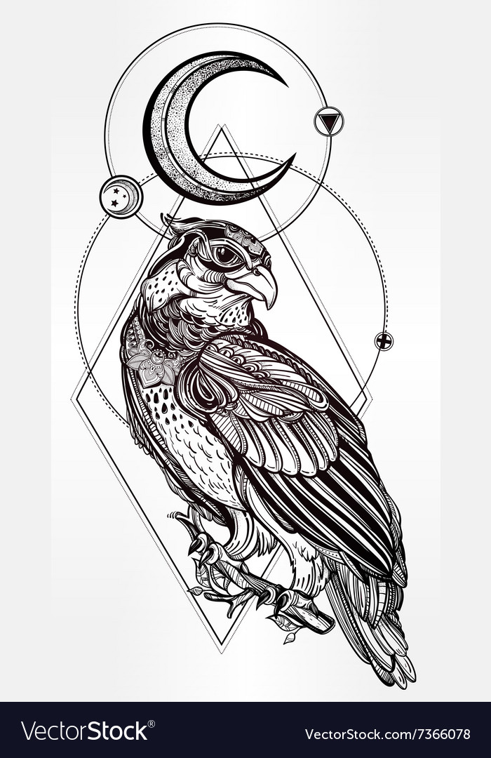 Detailed hand drawn bird of prey vector