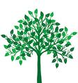 a green tree vector image