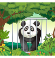 A forest with a panda inside a cage vector image vector image