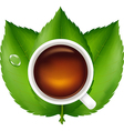 Cup With Tea And Green Leaves vector image vector image