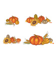pumpkin and corn vector image vector image