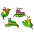 Cute cheerful cartoon caterpillars characters vector image