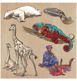 an hand drawn collection pack of animals vector image