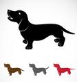 Dog Dachshund vector image