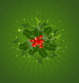 Christmas Holly On Green vector image