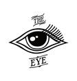 eye symbol theme vector image