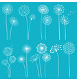 Set of dandelions vector image vector image