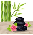 flower and bamboo isolated on a white background vector image
