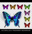 Realistic butterfly on transparent background vector image