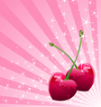 Love Cherry background vector image