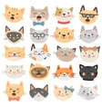 Cats heads emoticons vector image