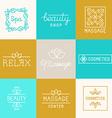 Spa and beauty logos vector image