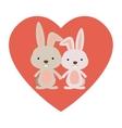 Isolated rabbit cartoon design vector image