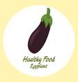 eggplant healthy food concept vector image