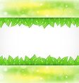 Eco brochure with fresh green leaves vector image vector image