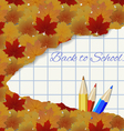 Abstract autumn background with maple leaves vector image