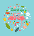 flamingo couple in summer tropical love vector image