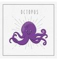 Octupus icon Sea life design graphic vector image