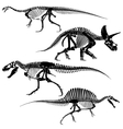 Ancient fossil dinosaur skeletons lizard animals vector image