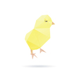 Chicken abstract isolated on a white backgrounds vector image
