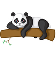 big panda vector image vector image
