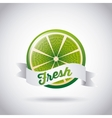 fresh fruit design vector image
