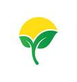 abstract leaf sun logo vector image