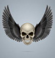 Evil skull with wings vector image