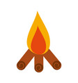 camp fire isolated icon vector image