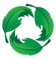 Eco Friendly Leaf Logo vector image