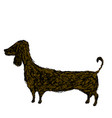silhouette dog dachshund doodle style cartoon vector image