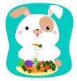 rabbit cartoon eating vegetable vector image