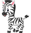cute zebra cartoon vector image