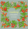 cranberry frame vector image