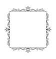 stylish elegant vintage frame with monograms vector image