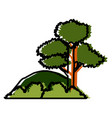 trees and bushes vector image
