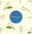 white champaka seamless pattern vector image